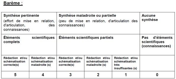dissertation svt meiose